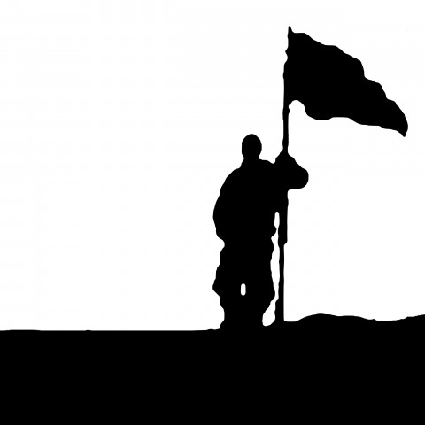 Silhouette of Man Holding Flag