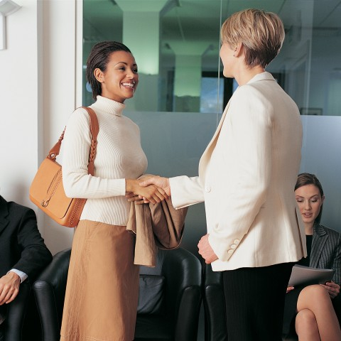 Two Businesswomen Greeting Each Other