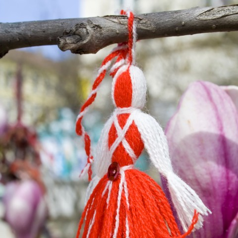 A Bulgarian Baba Marta Martenitsa Tied to a Tree Branch