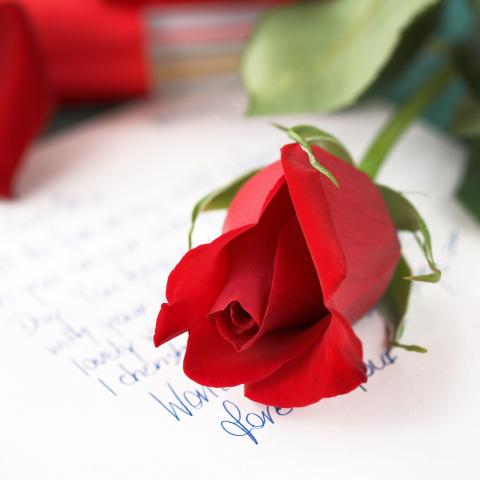Love Letter and a Red Rose