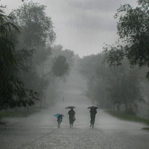 Family Ralking in Rain