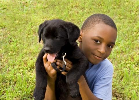 A Smiling Boy Holding a Cute Black Puppy.