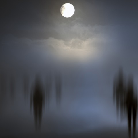Souls Wandering in the Moonlight
