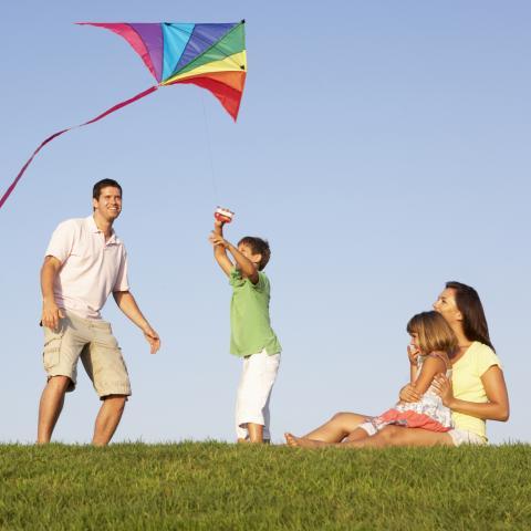 Family Flying Kite in Field