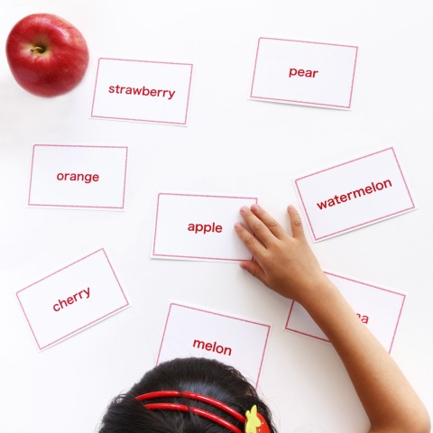A child learning words with flashcards