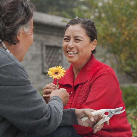 Older Couple Working in the Garden, Man Giving the Woman a Yellow Flower