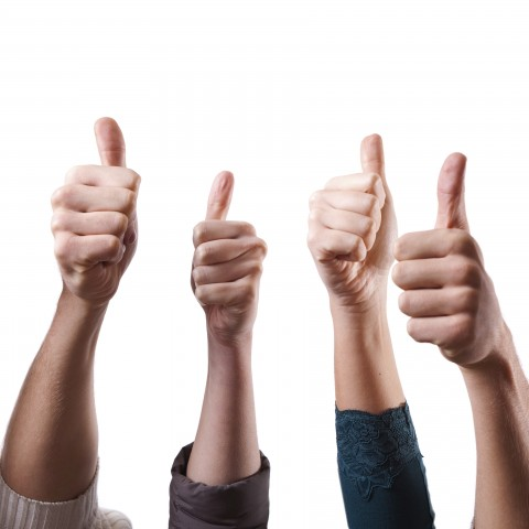 Four Hands Showing Thumbs Up