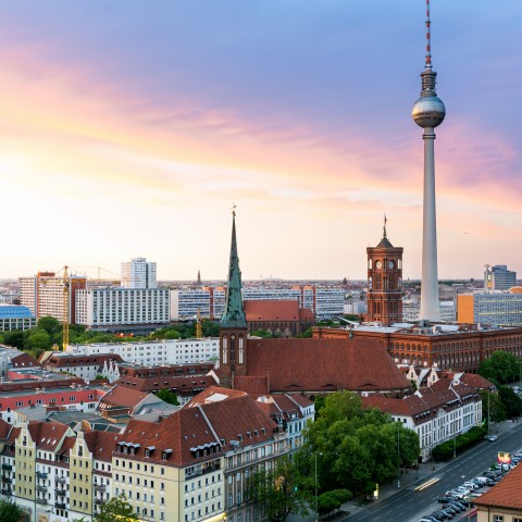 Roofs of Berlin and the Fernsehturm