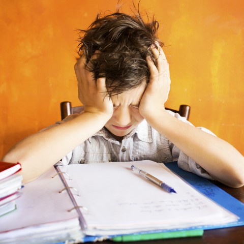 Boy Frustrated with Homework