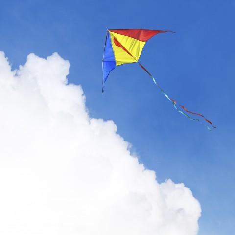 Kite on a Nice Day