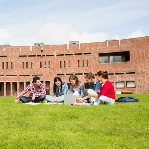 Group of college students chatting on a university lawn