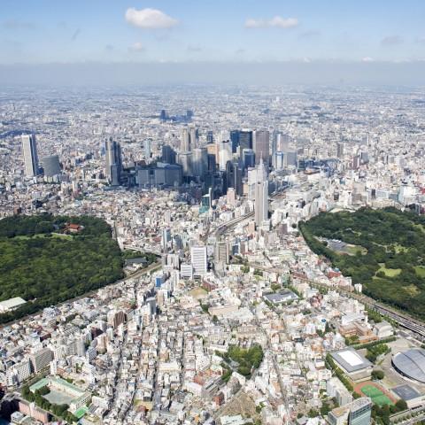 Japanese skyline