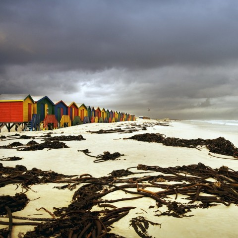 Cloudy Weather on Beach with Beach Huts