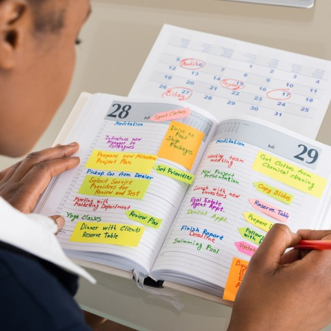 Person Looking at a Calendar