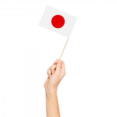 Someone Holding Miniature Japanese Flag