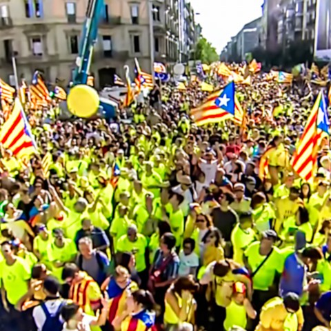 Crowd Carrying Flags