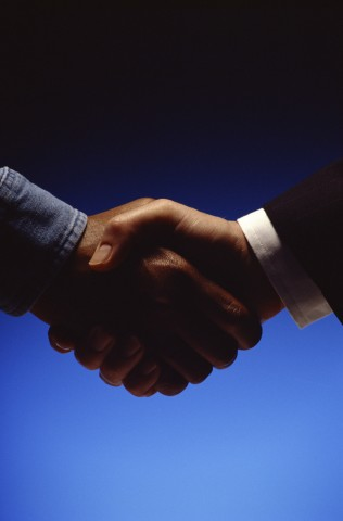 Two Male Hands in a Handshake.