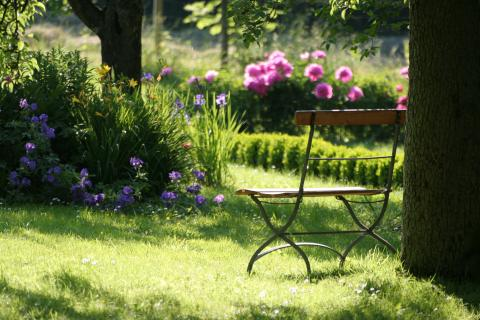 Lovely Spring Setting with Bench