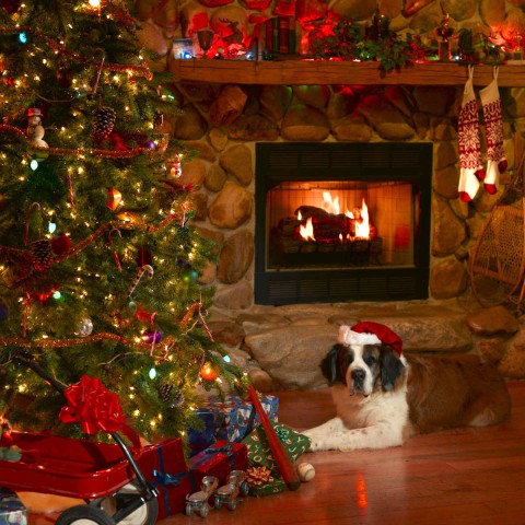 A Warm Christmas Scene with a Christmas Tree and Fireplace