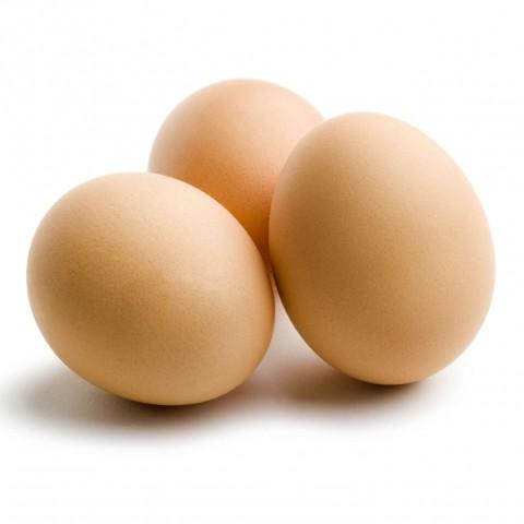 Boiled Egg or Omelette?