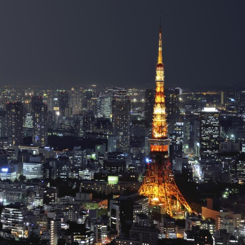 Several Tall Buildings in Tokyo